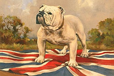 Framed British Bulldog Print
