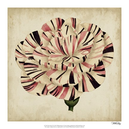 Framed Pop Floral VI Print