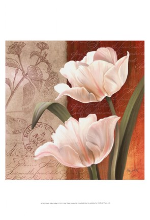 Framed French Tulip Collage I Print