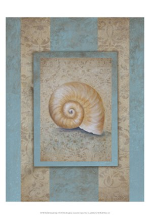 Framed Shell & Damask Stripe I Print
