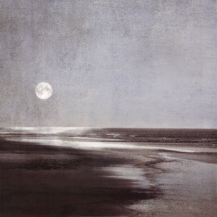 Framed Moonlit Beach Print