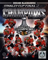 Chicago Blackhawks 2013 NHL Stanley Cup Champions Composite Art