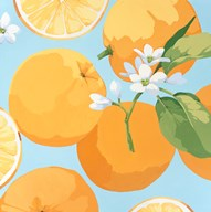 Fresh Oranges  Fine Art Print