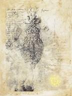 Alexandria  Fine Art Print