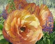 Arcidia Garden  Fine Art Print