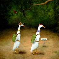 Backquackers  Fine Art Print
