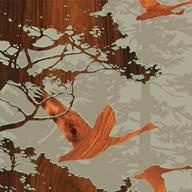 Bird 2  Fine Art Print