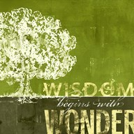 Wisdom Begins with Wonder Art