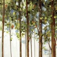 Forest Study III  Fine Art Print