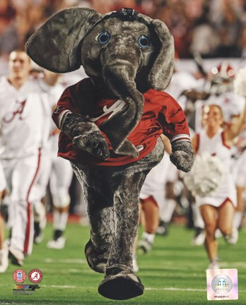 The University Of Alabama Crimson Tide Mascot Fine Art