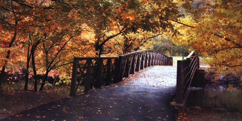 Framed Autumn Overpass-Special Print