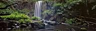 Hopetoun Falls Art