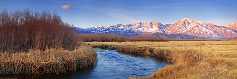 Framed Owens River Print