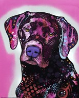 Black Lab  Fine Art Print