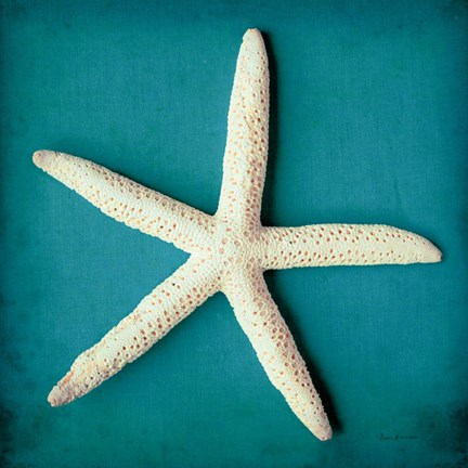 Framed Sea Star II Print