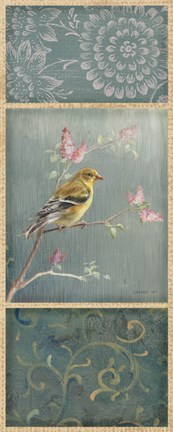 Framed Female Goldfinch Print