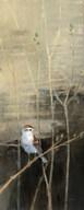Sparrows at Dusk I  Fine Art Print