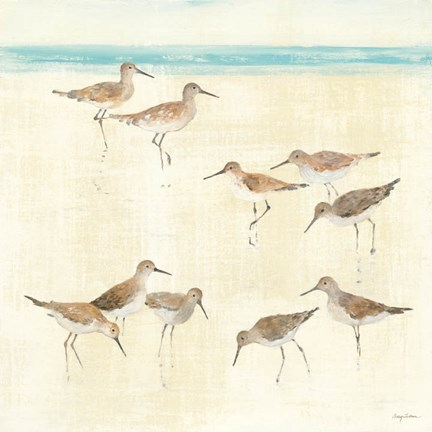 Framed Sandpipers Print