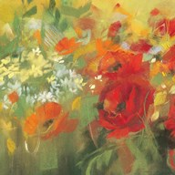 Oriental Poppy Field II Art