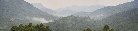 Framed Forest with mountain range, Bwindi Impenetrable Forest, Bwindi Impenetrable National Park, Uganda Print