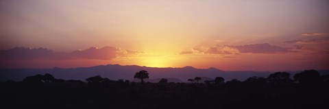 Framed Sunset over a landscape, Tarangire National Park, Tanzania Print