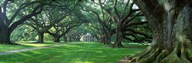 USA, Louisiana, New Orleans, Oak Alley Plantation, plantation home through alley of oak trees Art