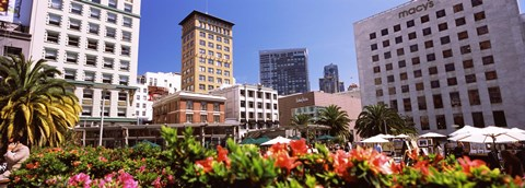 Framed Buildings in a city, Union Square, San Francisco, California, USA Print