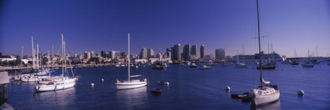 Framed Sailboats in the bay, San Diego, California, USA 2010 Print