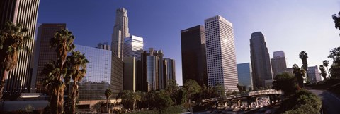 Framed Palm trees and skyscrapers in a city, City Of Los Angeles, Los Angeles County, California, USA Print