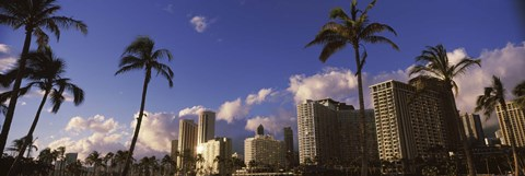 Framed Low angle view of skyscrapers, Honolulu, Hawaii, USA 2010 Print