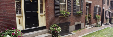 Framed Potted plants outside a house, Acorn Street, Beacon Hill, Boston, Massachusetts, USA Print