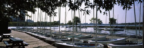 Framed Boats moored at a dock, Charles River, Boston, Suffolk County, Massachusetts, USA Print
