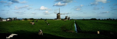 Framed Windmills, Netherlands Print