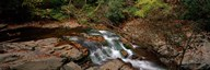 White Water The Great Smoky Mountains TN USA Art