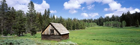 Framed Log cabin in a field, Klamath National Forest, California, USA Print