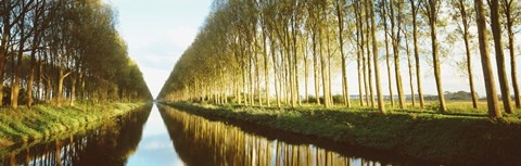 Framed Belgium, tree lined waterway through countryside Print