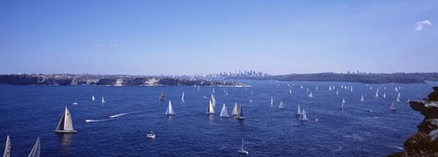 Framed Yachts in the bay, Sydney Harbor, Sydney, New South Wales, Australia Print