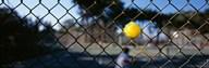 Close-up of a tennis ball stuck in a fence, San Francisco, California, USA  Fine Art Print