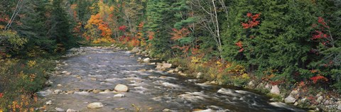 Framed River flowing through a forest, Ellis River, White Mountains, New Hampshire, USA Print