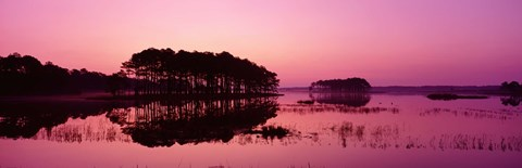 Framed Panoramic View Of The National Forest During Sunset, Chincoteague National Wildlife Refuge, Virginia, USA Print
