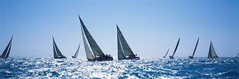 Framed Sailboats racing in the sea, Farr 40's race during Key West Race Week, Key West Florida, 2000 Print