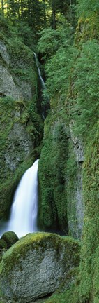 Framed Waterfall in a forest, Columbia River Gorge, Oregon, USA Print
