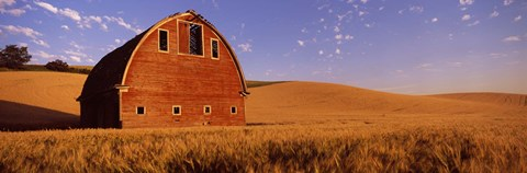 Framed Old barn in a wheat field, Palouse, Whitman County, Washington State Print