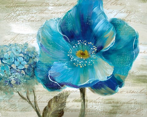 Blue Poppy Poem Ii Fine Art Print By Nan At Fulcrumgallery Com