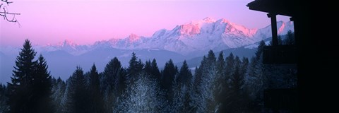 Framed Trees with snow covered mountains at sunset in winter, Combloux, Mont Blanc Massif, Haute-Savoie, Rhone-Alpes, France Print