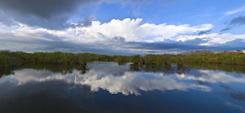 Framed Reflection of clouds on water, Everglades National Park, Florida, USA Print