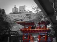 Temple In Tokyo  Fine Art Print