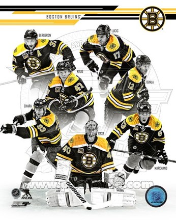 Framed Boston Bruins 2013-14 Team Composite Print