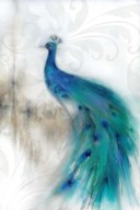Jewel Plumes II Art