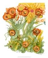 Sunlit Poppies III  Fine Art Print